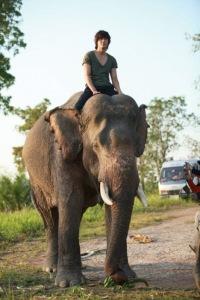 City Hunter in Thailand